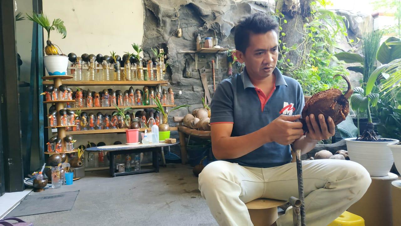 Buat Bonsai Kelapa Warga Di Mojokerto Raup Omset 5 Hingga 8 Juta